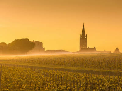 Saint Emilion Sunrise Bordeau 185583511