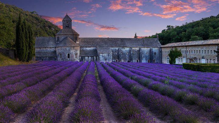 The Abbey, Sénanque by Tim Shields